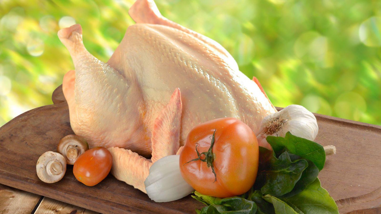 Описание курицы